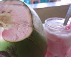 jual-bibit-kelapa-hijau-wulung-A3.jpg